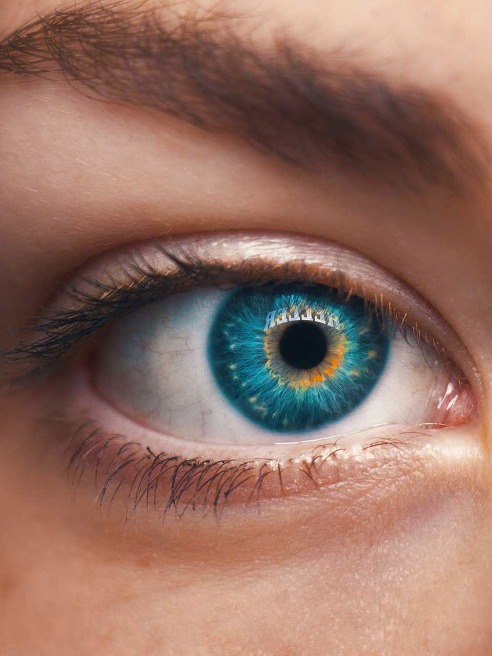 Focus topic 'visions'
